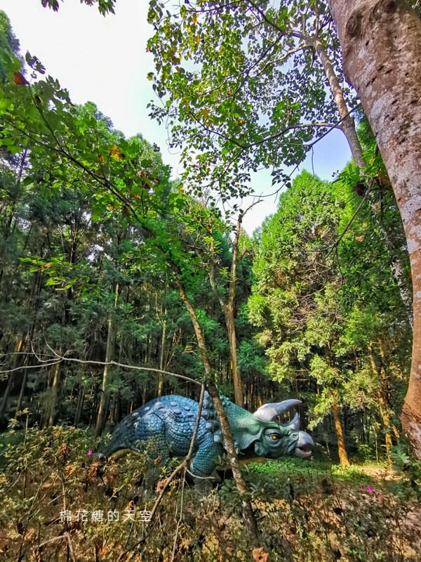 台中住宿推薦|東勢林場不只可以賞花、爬山、看螢火蟲還可以住宿泡溫泉喔!